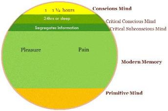 Structure Of Mind